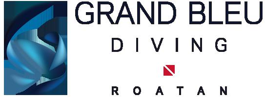 Grand Bleu Diving
